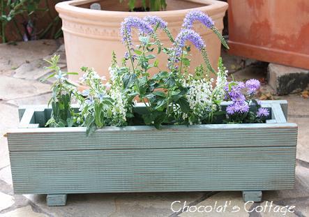 Blueplanter